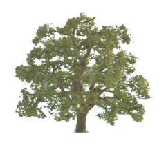 JTT #94348 Live Oak Trees - 1-1/2'' Tall (4 per packge)