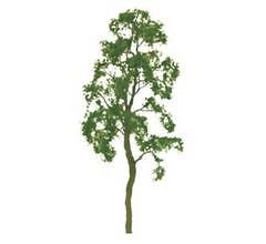 JTT #94416 Birch Trees - 2'' Tall (4 per packge)