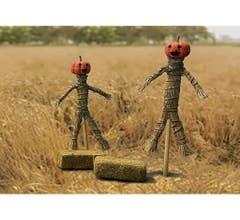 JTT #95723 Pumpkin Scarecrows & Hay Bales (2/PK)