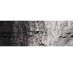 Woodland Scenics #C1220 Black 4 oz. Liquid Pigment