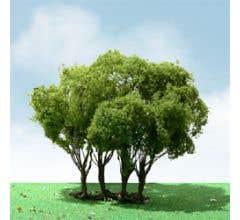 """JTT #92303 Privet Pro-Elite Trees - 3"""" - 3.5"""" (1 per package)"""