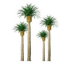JTT #94354 Phoenix Palm Trees - 3'' Tall (3 per packge)