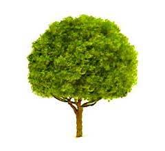 "JTT #94261 Oak Trees 1.5"" (4 per pack)"
