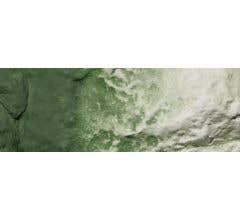 Woodland Scenics #C1228 Green Undercoat 8 oz Liquid Pigment
