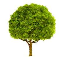 "JTT #94262 Oak Trees 2"" (3 per pack)"