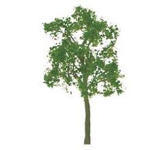 JTT #94425 Ash Trees - 3'' Tall (2 per packge)
